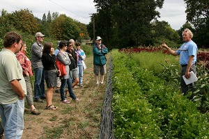 Wild Garden Seed's Frank Morton demonstrates his seed growing and selecting techniques at Gathering Together Farm in Philomath (photo by Cheryl Brock/Slow Food Portland).