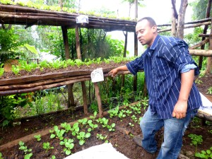 Gondar Garden 5 rev