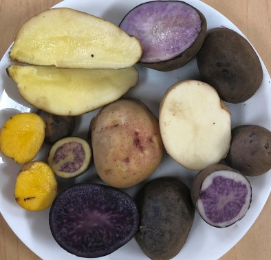 Dry-farmed potatoes (2).JPG